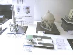 DSCN5810_R.jpg
