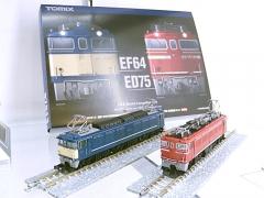 DSCN6500.jpg