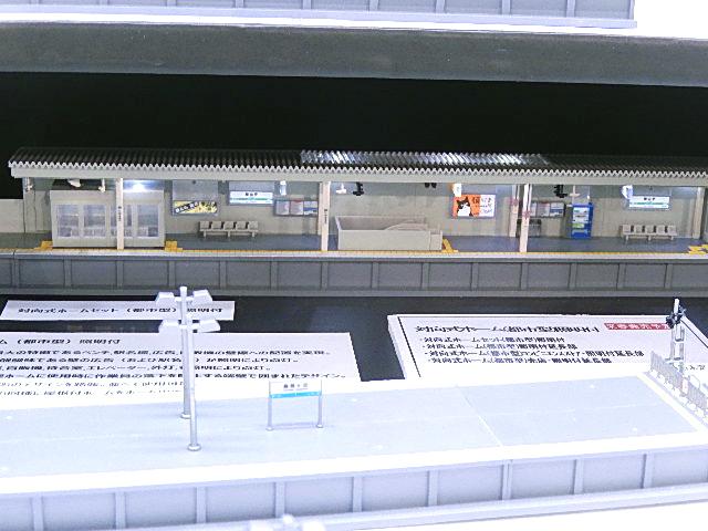 DSCN6559.jpg