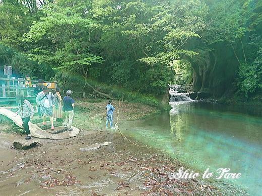 DSC_0038_20190503_01_濃溝の滝