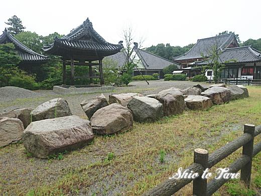 DSC_0020_20190806_02_新屋島水族館