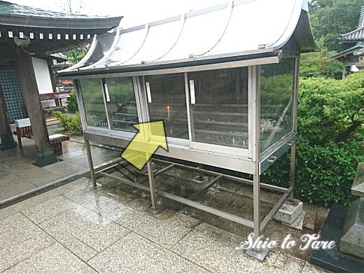 DSC_0023_20190806_02_新屋島水族館