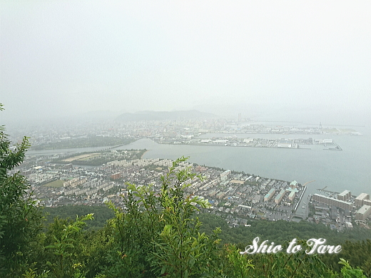 DSC_0026_20190806_02_新屋島水族館