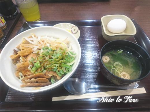 DSC_0070_20190808_03_徳島丼