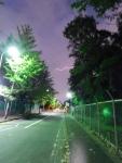 asaka2019s_11.jpg