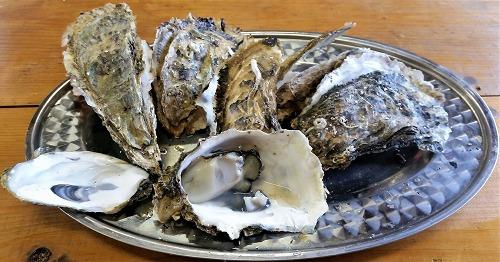 浦村 焼き牡蠣