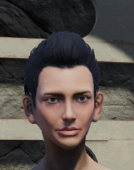 fallout-76-pompadour-wig_thumb.jpg