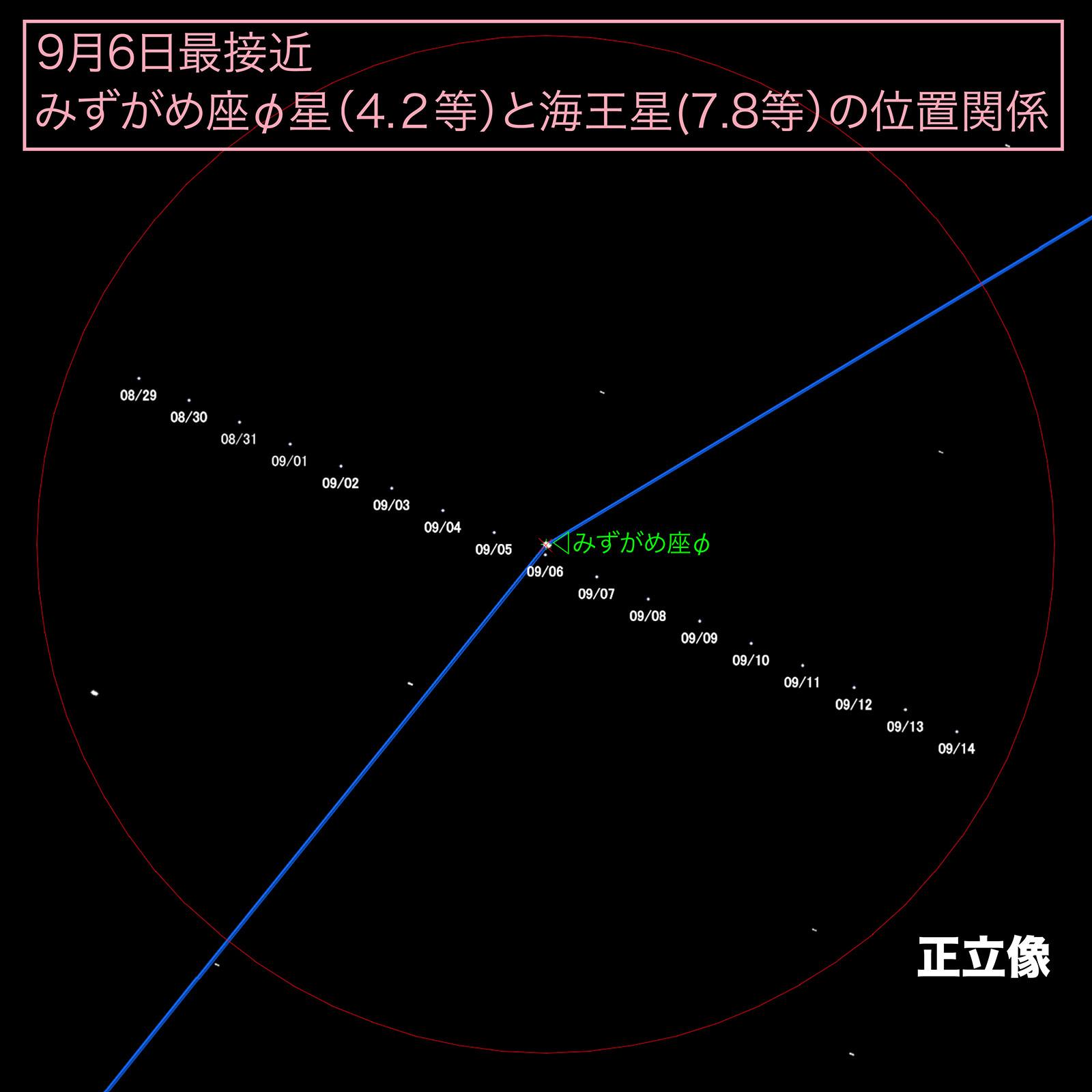 海王星正立像チャート