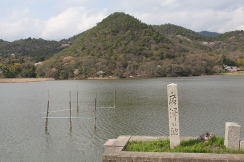 広沢池(春)_H26.04.05撮影