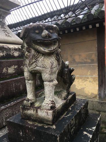 下御霊神社・狛犬(阿形)_H30.06.15撮影
