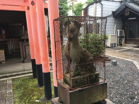 下御霊神社・稲荷社の狛狐_H30.06.15撮影
