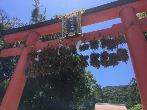 松尾大社・二の鳥居の脇勧請(わきかんじょう)_H30.06.16撮影