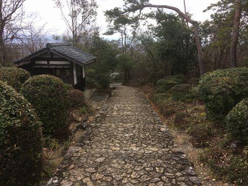 嵯峨天皇陵山頂付近_H31.02.10撮影