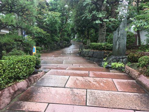 養玉院如来寺・参道_R01.06.22撮影