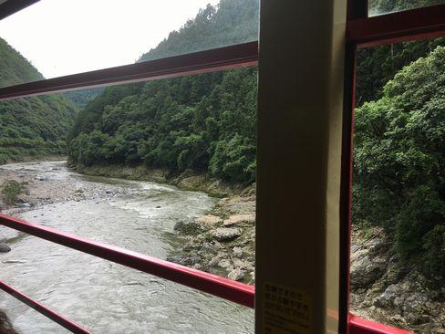 トロッコ列車から保津川_R01.07.14撮影