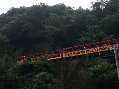 保津川下りから見るトロッコ電車_R01.07.14撮影