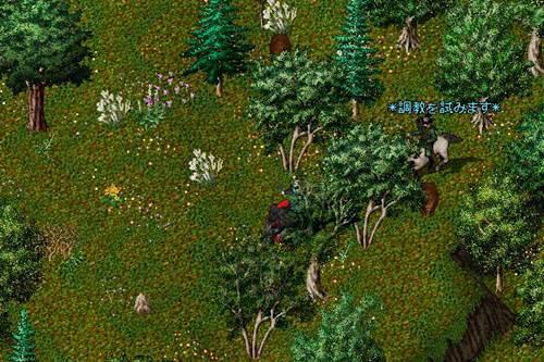 ムングロ鹿狩場の上はブラウンベアいっぱい、テイマー居たので避けました。