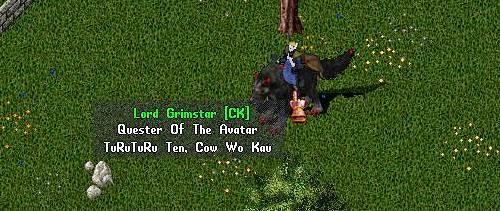 牛を飼う、というギルド名のハズ