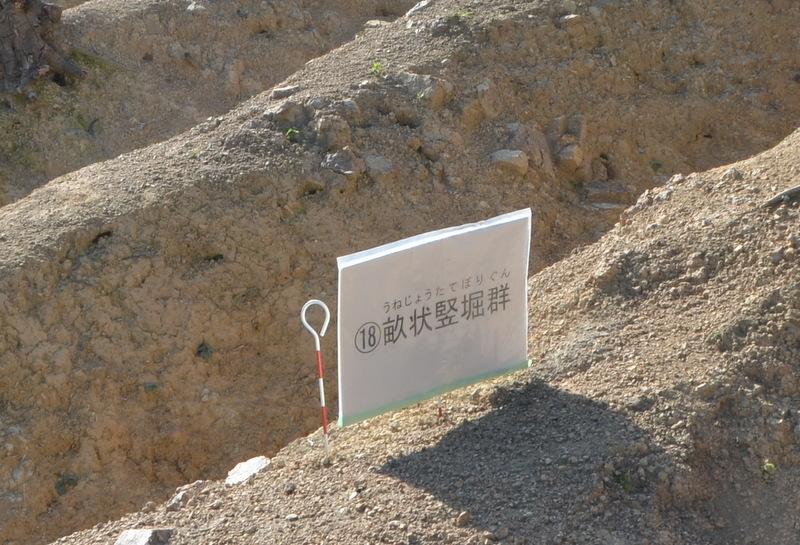 畝状竪堀軍DSC_2957