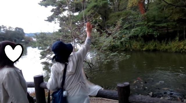 公園の池-1