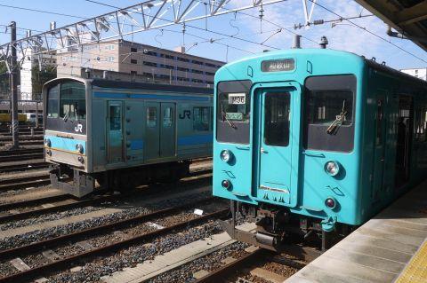 P1080129.jpg