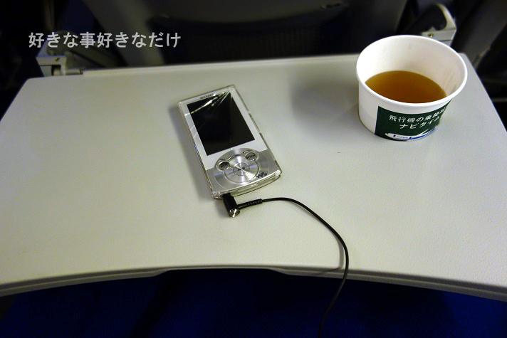 DSC00735のコピー