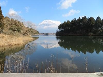 20190113富士山