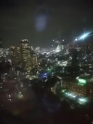 tokyotowerkara.jpg
