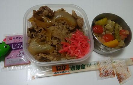 yoshinoyabennto201903.jpg