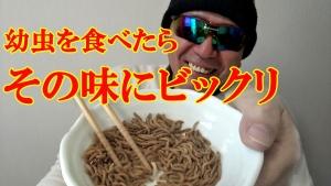 幼虫を食べたらその味にビックリ ミルワーム