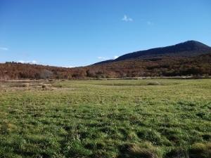 181018グダリ沼辺りの田代高原