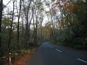 181025薄暮の山道
