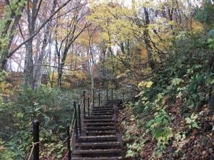 181101階段上る