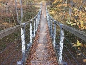 181108つり橋