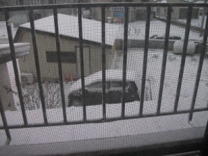 181123初雪見下ろす