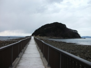 190411橋で渡る