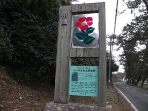 190411椿山看板
