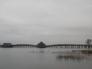 190425鶴の舞橋