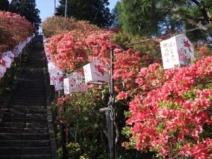 190516急階段上り