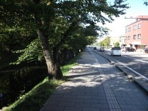 190926弘前城外濠の道