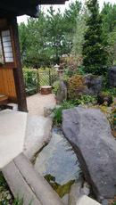 181004 ゆめ花博坪庭4