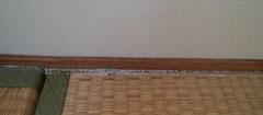 181031 2F和室畳a