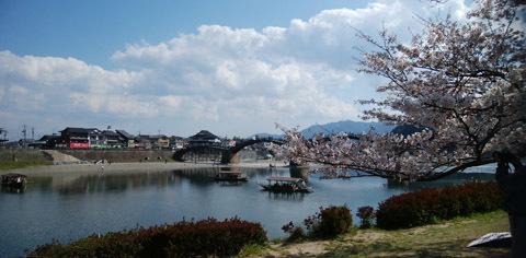 190401 桜・錦帯橋