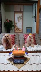 190726 12歳お祝いケーキ