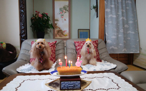 190726 12歳お祝いケーキ1