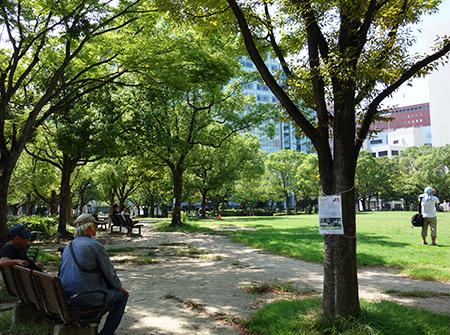 福岡天神中央公園