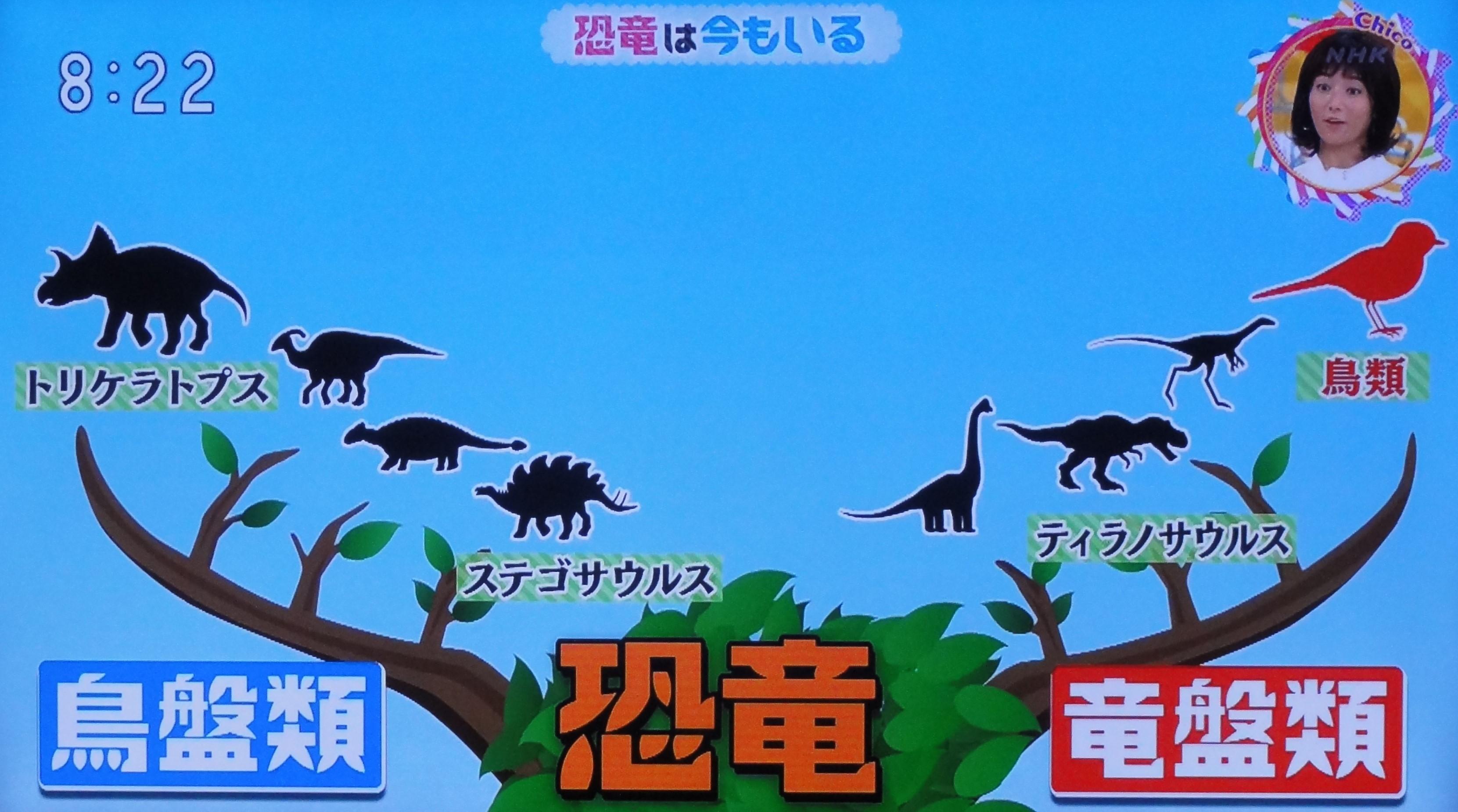 恐竜の歌 nhk