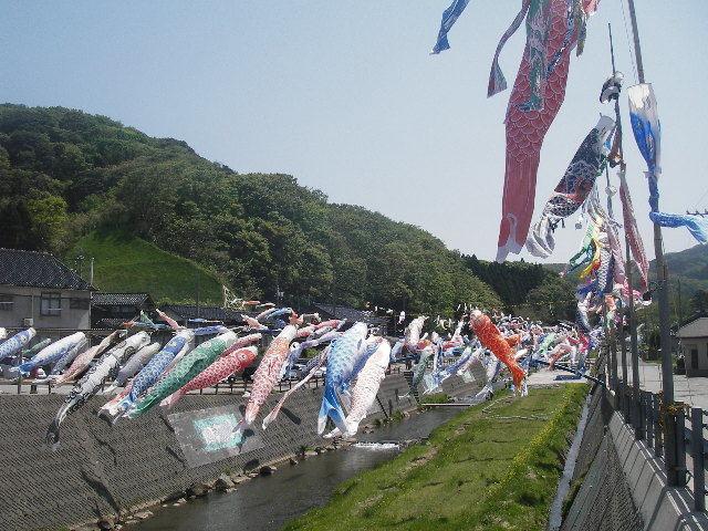 大谷川橋の鯉のぼり201805-2