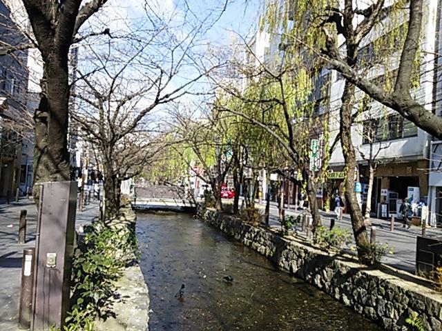 高瀬川201901