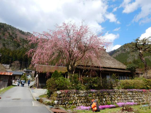 美山にて201904-6